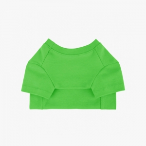 Cotton T-Shirt Light Green