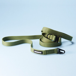 Cobra Buckle Leash_Lime