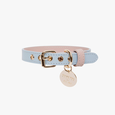 Neck Collar (Sky Blue)
