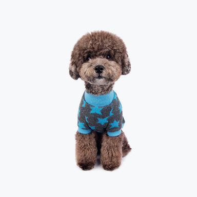 Star Turtleneck Sweater (Blue)
