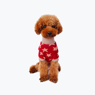 Star Turtleneck Sweater (Red)