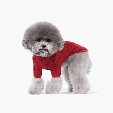 Turtle Neck Wool Knit (Red)