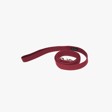Color Leash (Red)