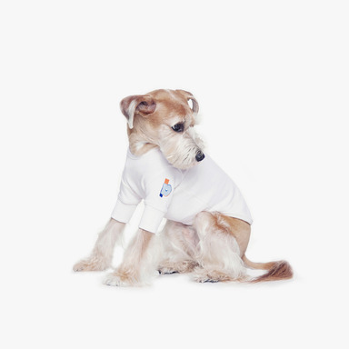 BUiLD A PUPPY Original Man-to-man (White)