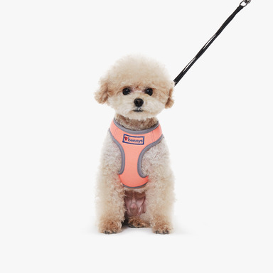 Bennys Neon Harness (Orange)