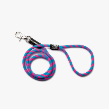 Blue Pink Leash