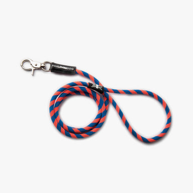 Blue Orange Leash