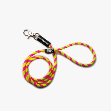 Yellow Pink Leash