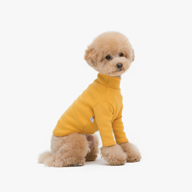 Basic Turtleneck (Mustard)