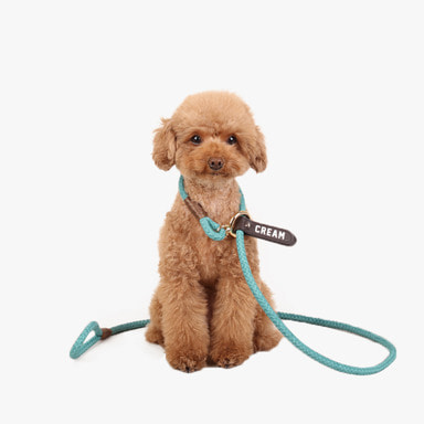 Smartleash Hard Type (Mint)