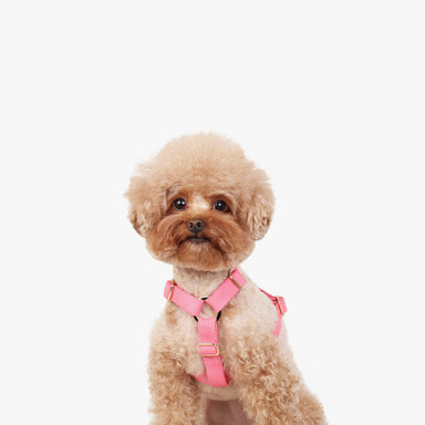 Soft Harness (Neon Pink)