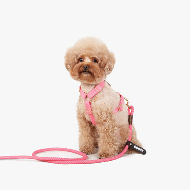 Hardtype Leash Set