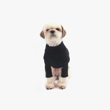 Daily Turtleneck Top (Black)