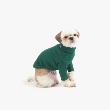 Daily Turtleneck Top (Green)