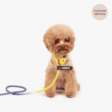 Smartleash Hard Type (Yellow&Blue)