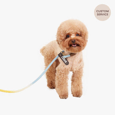 Smartleash Hard Type (Yellow&Baby blue)
