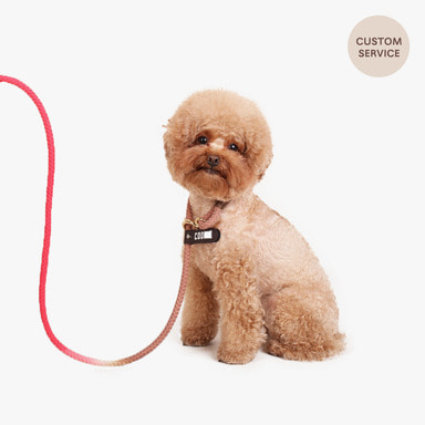 Smartleash Hard Type (Hot pink&Cocoa)