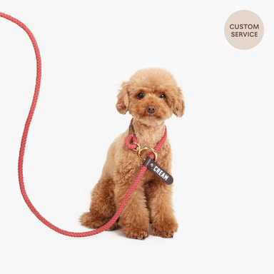 Smartleash Hard Type (Burgundy)