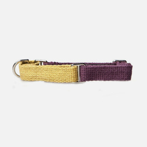 Color Block Collar (Yellow-Purple)