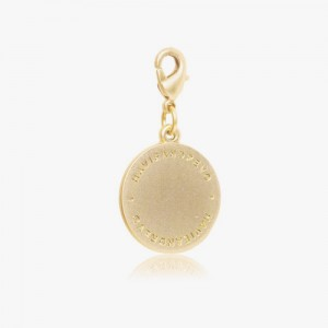 ORIGINAL ROUND ID-TAG - MATT GOLD BRASS