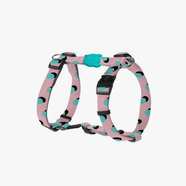 Polka Dog Harness
